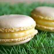 MACARONS AU CITRON